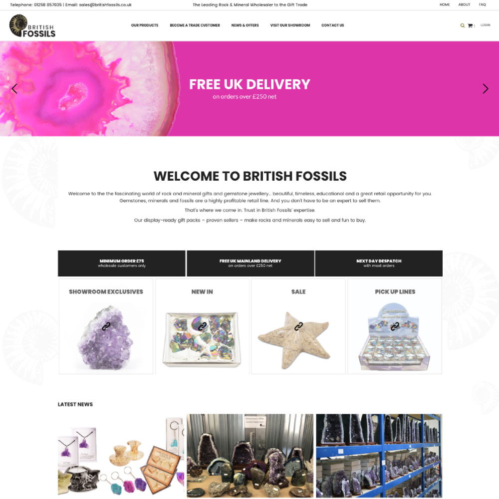 british-fossils-website-1