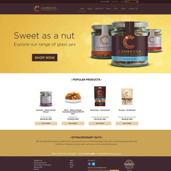 Andover Website Design Project